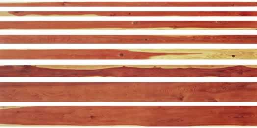 Redwood Timbers